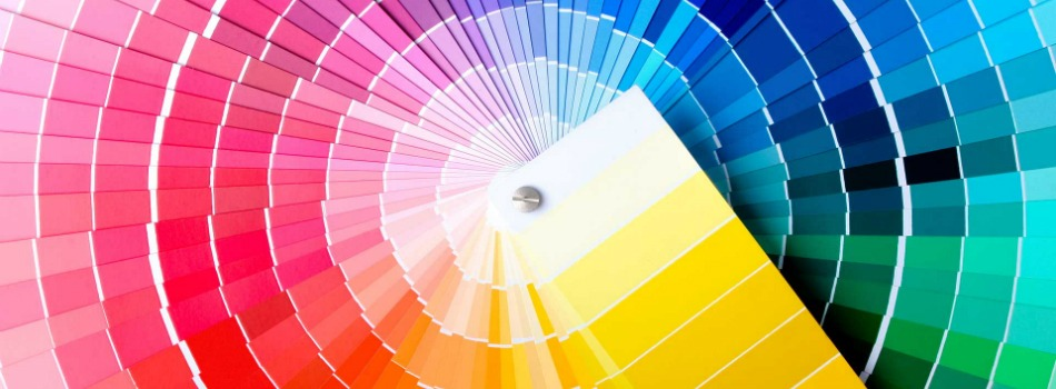 Get to Know the Best Color Palette Generators Available on the Web