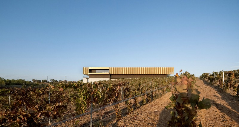 A look at two young promising Architecture Studios from Portugal