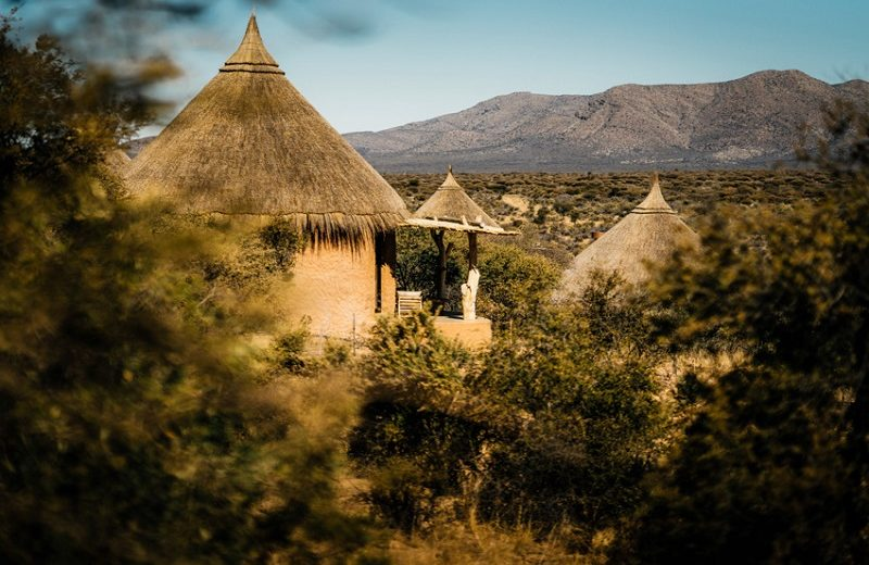 Experience Oomanda, a Luxury Safari Lodge by Zannier Hotels  Luxury Safari Experience The Luxury Safari Lodges by Zannier Hotels  Luxury Travel Guide Oomanda a Luxury Safari Lodge by Zannier Hotels 9