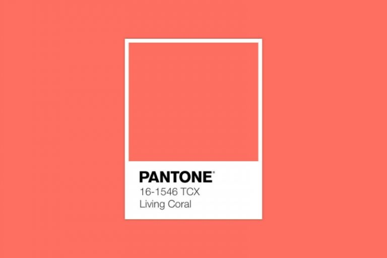Living Coral is Pantone's Colour of 2019 living coral Living Coral is Pantone's Colour of 2019 Living Coral is Pantones Colour of 2019 1