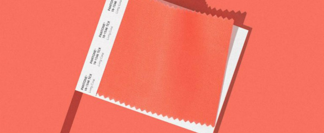 living coral Living Coral is Pantone's Colour of 2019 Living Coral is Pantones Colour of 2019 2 1
