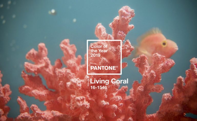 Moodboard - Interior Design Trends for 2019 Interior Design Trends Moodboard – Interior Design Trends for 2019 Living Coral is Pantones Colour of 2019